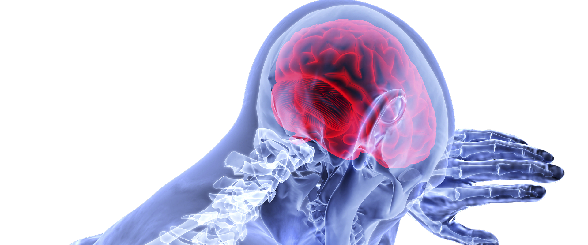 Rehabilitation after traumatic brain injury